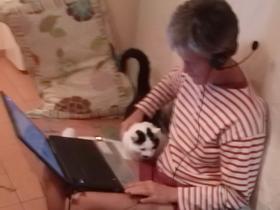 Online-Arbeit am Laptop - intensiv und kurzweilig
